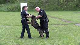 K9 Officer Mekel Graduates To Mansfield Police Department